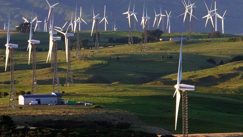 Новая Зеландия собирается принят закон, обязующий компании отчитываться о своем влиянии на климат