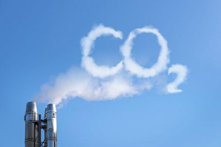 Гріненко: Обнулення податку на СО2 дасть поштовх розвитку біоенергетики