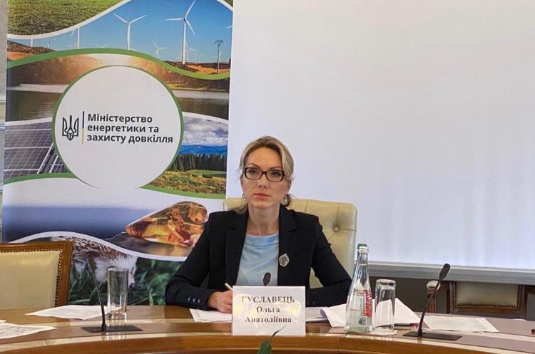 Реструктуризація «зеленого» тарифу не торкнеться біомаси – Буславець