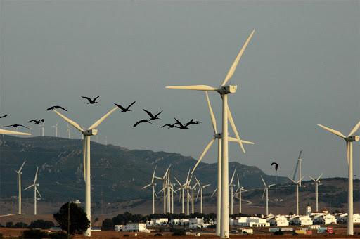 Доля возобновляемых источников энергии в Испании выросла до 58,9% в феврале