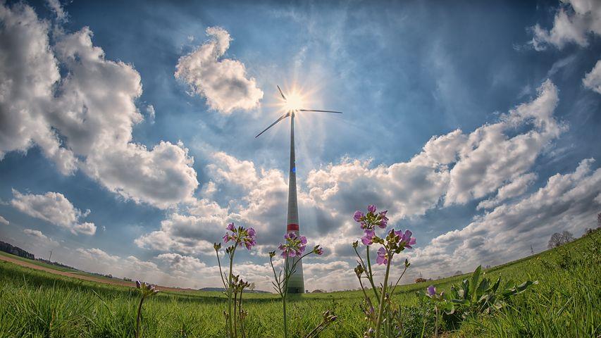 Производители электроэнергии из ВИЭ получили доплату за август