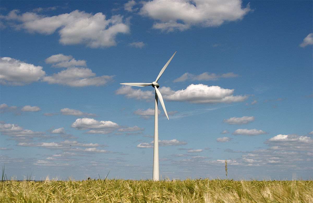 Global renewable power capacity to rise by 50% in five years: IEA