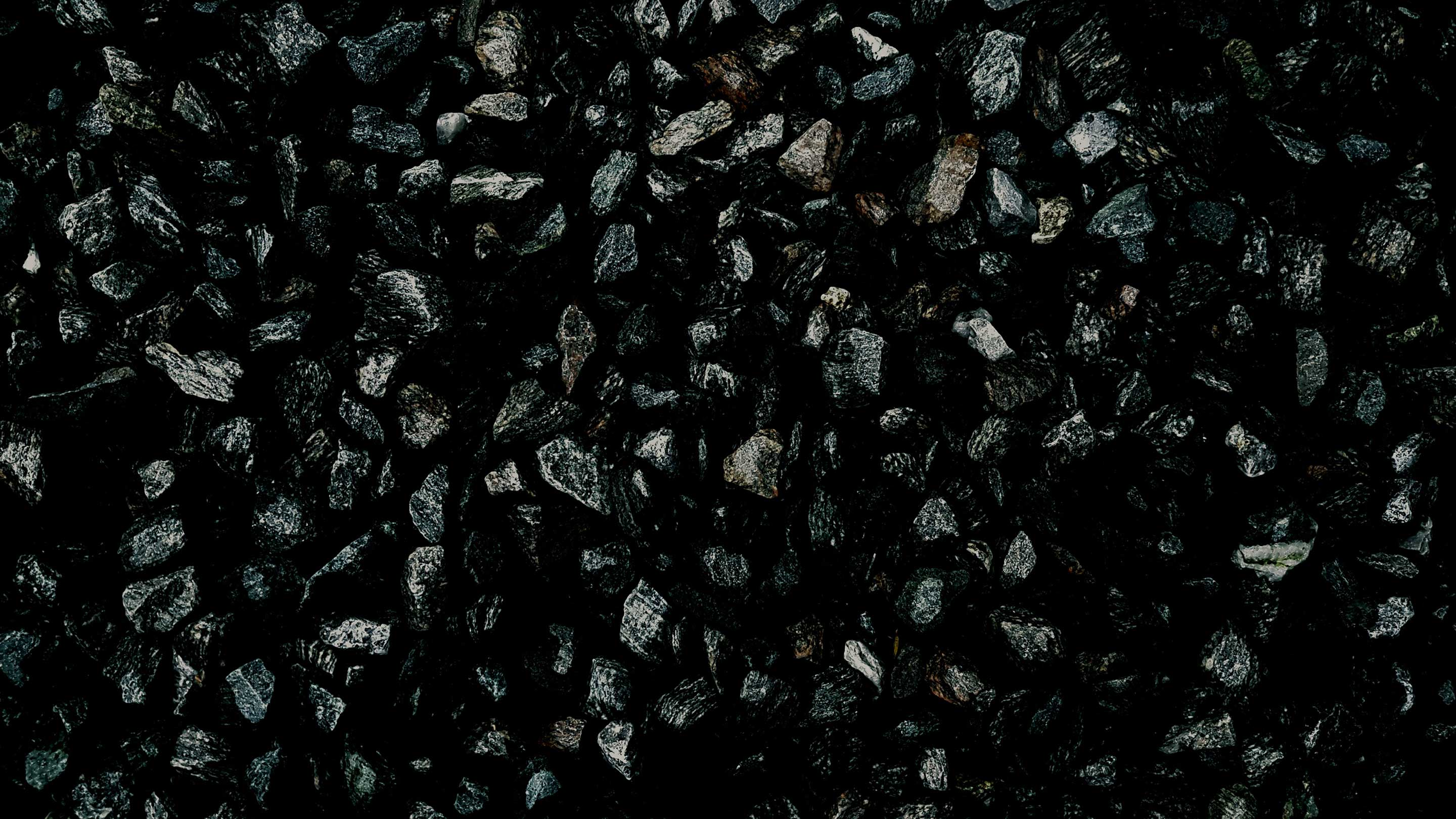 World coal prices rise due to stronger demand in Asia