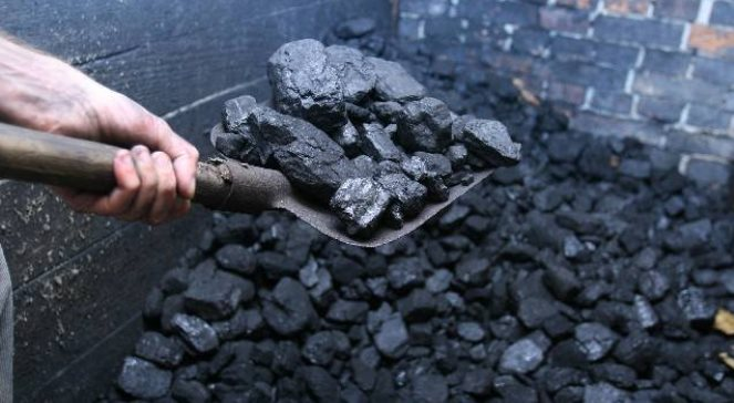 Coal reserves at thermal power plants exceeded last year's figures by 2% for the first time