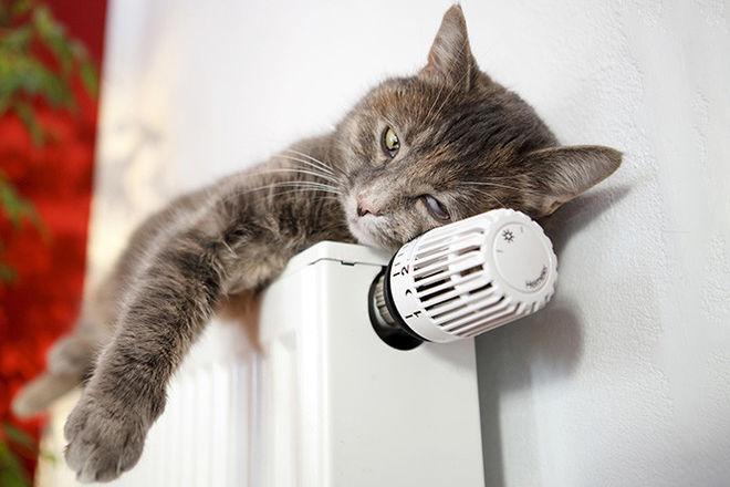 Ассоциация тепловиков прогнозирует рост тарифа на тепло